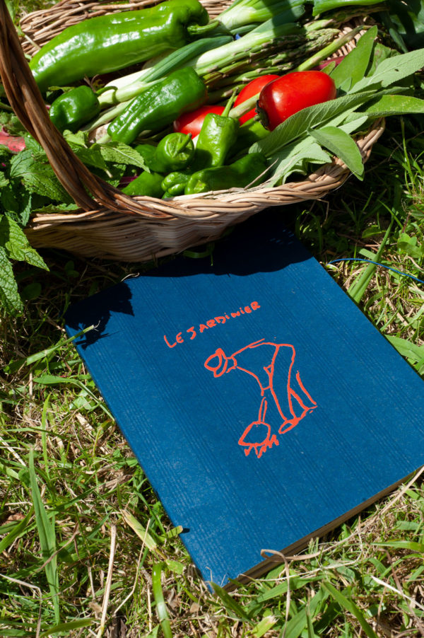 Graine - Collaboration La Compagnie du Kraft - Carnet Le Jardinier bleu