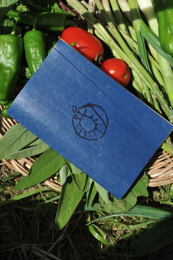 Graine - Collaboration La Compagnie du Kraft - Carnet Les Graines bleu